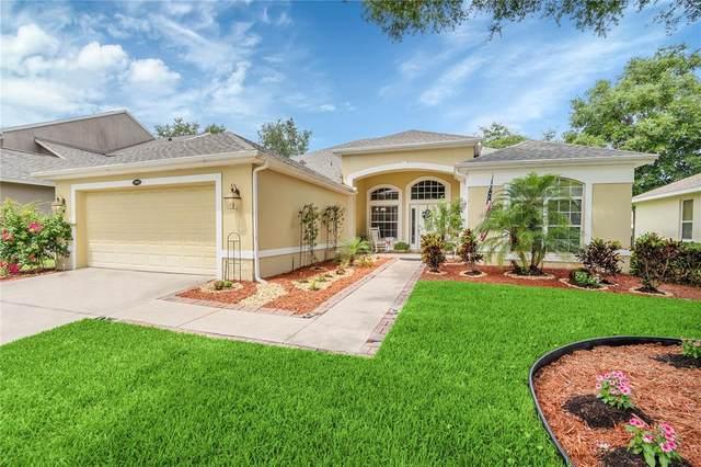3985 Beacon Ridge Way, Clermont, FL 34711 (MLS #G5043374) :: Armel Real Estate