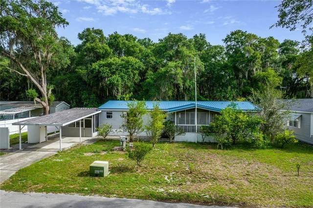 10419 Watts Avenue, Leesburg, FL 34788 (MLS #G5043396) :: Gate Arty & the Group - Keller Williams Realty Smart