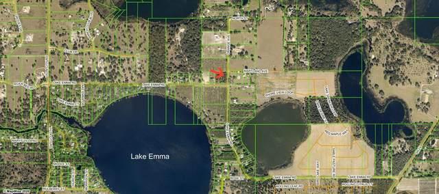 Lake Emma Road, Groveland, FL 34736 (MLS #G5043417) :: Gate Arty & the Group - Keller Williams Realty Smart