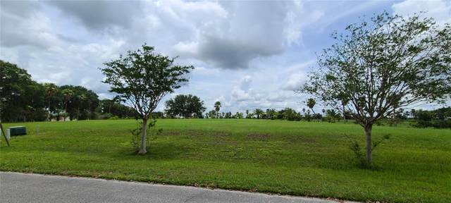Marigold Street, Groveland, FL 34736 (MLS #G5043418) :: Globalwide Realty