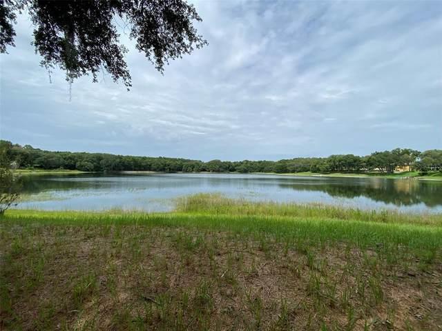108 Hidden Oaks Drive, Lady Lake, FL 32159 (MLS #G5043471) :: Globalwide Realty