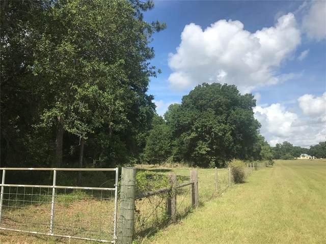 Grass Roots Drive, Groveland, FL 34736 (MLS #G5043526) :: Armel Real Estate