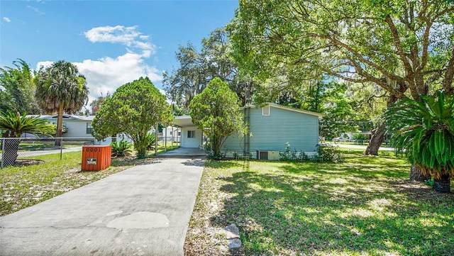 10001 SE 169TH Lane, Summerfield, FL 34491 (MLS #G5043528) :: Alpha Equity Team