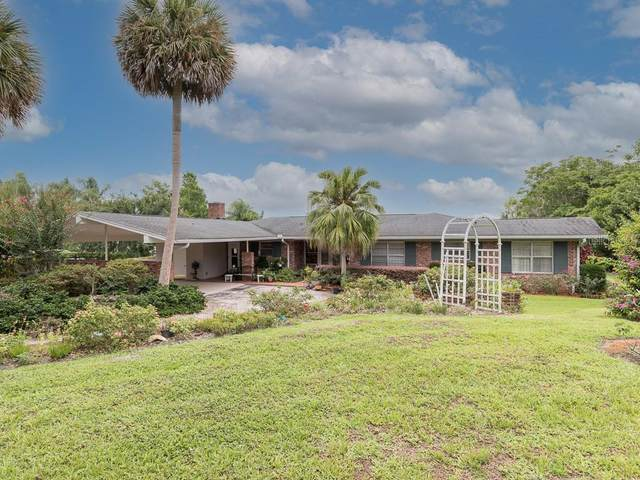 491 Guerrant Street, Umatilla, FL 32784 (MLS #G5043590) :: Armel Real Estate