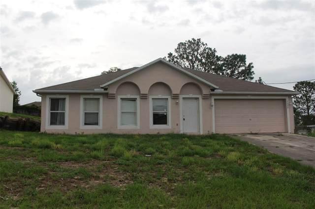 5335 Baldock Avenue, Spring Hill, FL 34608 (MLS #G5043628) :: The Lersch Group