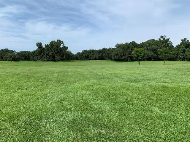 Cr 707, Webster, FL 33597 (MLS #G5043643) :: Griffin Group