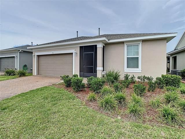 732 Alcove Drive, Groveland, FL 34736 (MLS #G5043644) :: Zarghami Group