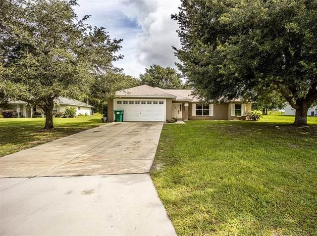 205 Shannon Lane, Lady Lake, FL 32159 (MLS #G5043715) :: Zarghami Group