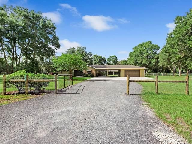1083 NE 137TH Lane, Oxford, FL 34484 (MLS #G5043720) :: Zarghami Group