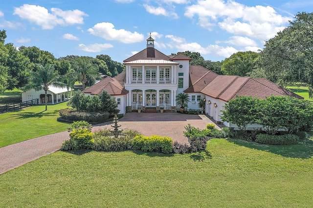 29030 Can Do Lane, Tavares, FL 32778 (MLS #G5043835) :: Vacasa Real Estate