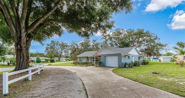 3356 Oak Hill Road, Mount Dora, FL 32757 (MLS #G5043839) :: Zarghami Group