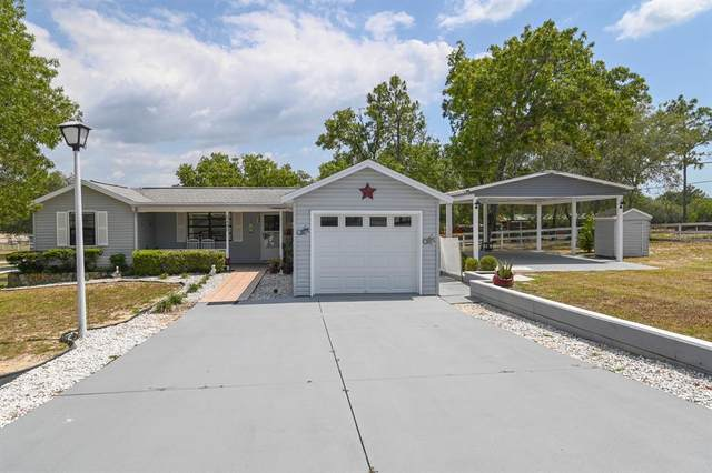 3480 W Woodthrush Street, Lecanto, FL 34461 (MLS #G5043988) :: Dalton Wade Real Estate Group