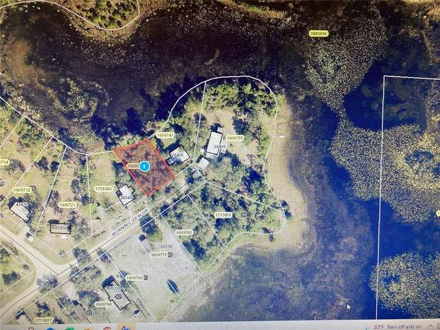 Morning View Drive, Paisley, FL 32767 (MLS #G5044129) :: Your Florida House Team