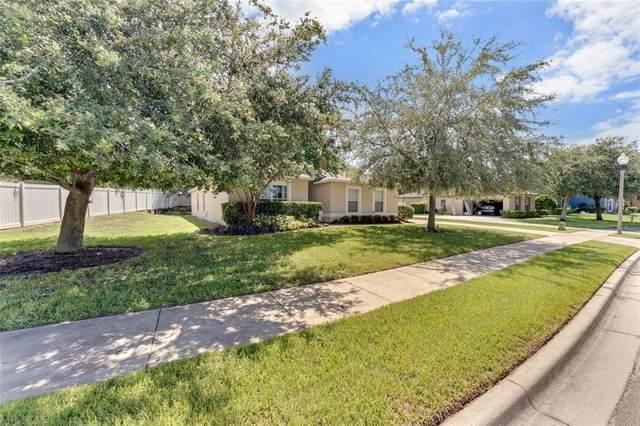 333 Lake Shepard Drive, Apopka, FL 32703 (MLS #G5044290) :: Frankenstein Home Team