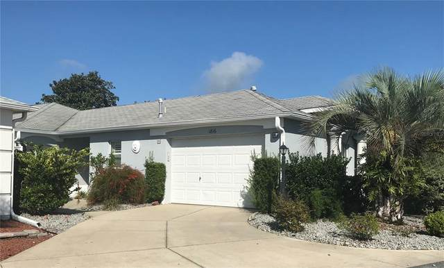 1816 Peachtree Avenue, The Villages, FL 32162 (MLS #G5044323) :: Realty Executives