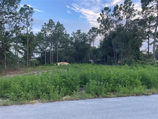 Se 161 St, Summerfield, FL 34491 (MLS #G5044356) :: The Hustle and Heart Group