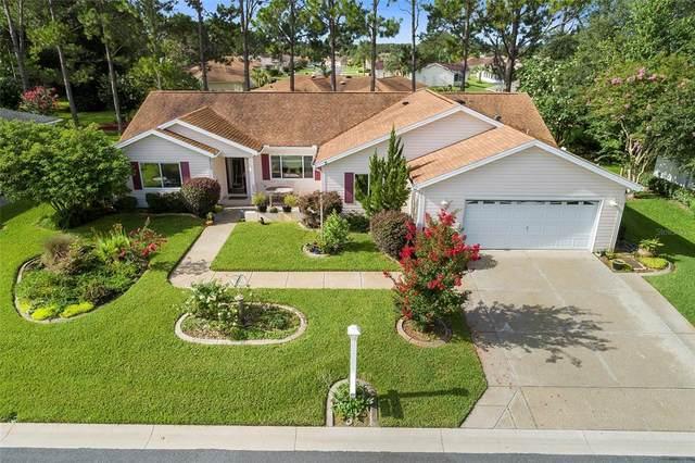 8447 SE 137TH Loop, Summerfield, FL 34491 (MLS #G5044378) :: Zarghami Group