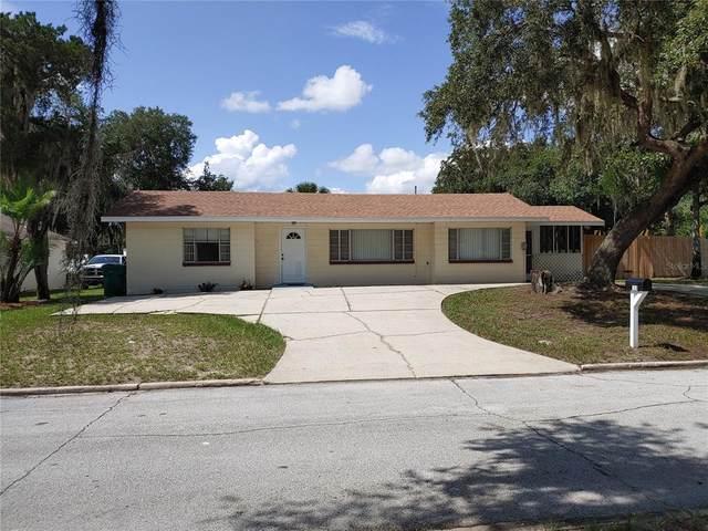 125 E Pendleton Ave, Eustis, FL 32726 (MLS #G5044463) :: Rabell Realty Group