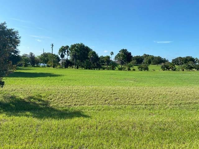 7428 Jasmine Street, Groveland, FL 34736 (MLS #G5044504) :: Sarasota Home Specialists