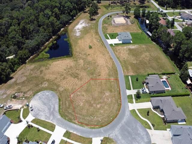 34933 Golden Tree Drive, Leesburg, FL 34788 (MLS #G5044563) :: GO Realty