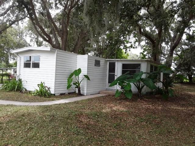 9747 SE 164TH Place, Summerfield, FL 34491 (MLS #G5044569) :: Zarghami Group