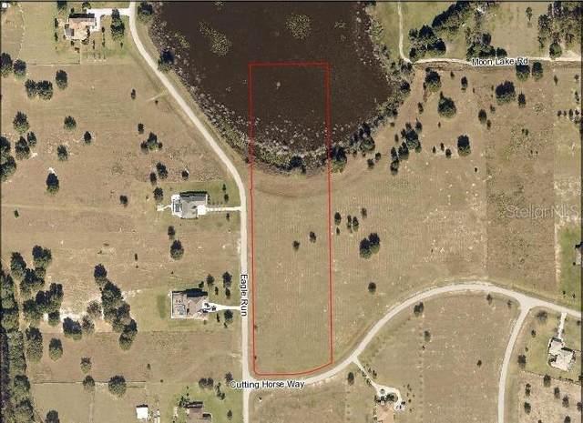 Eagle Run, Groveland, FL 34736 (MLS #G5044603) :: Globalwide Realty