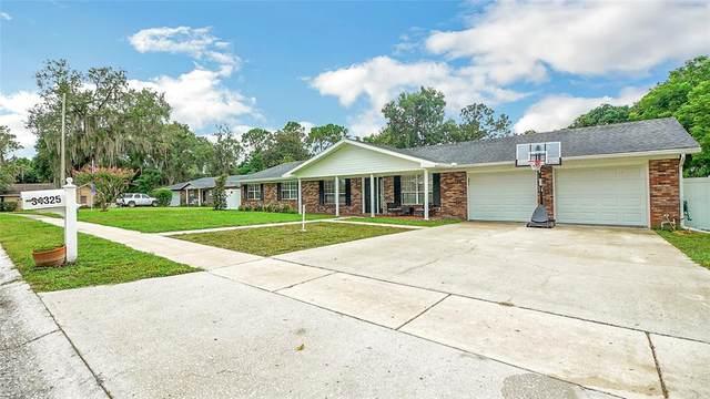 34325 Black Bass Circle, Fruitland Park, FL 34731 (MLS #G5044605) :: Bridge Realty Group