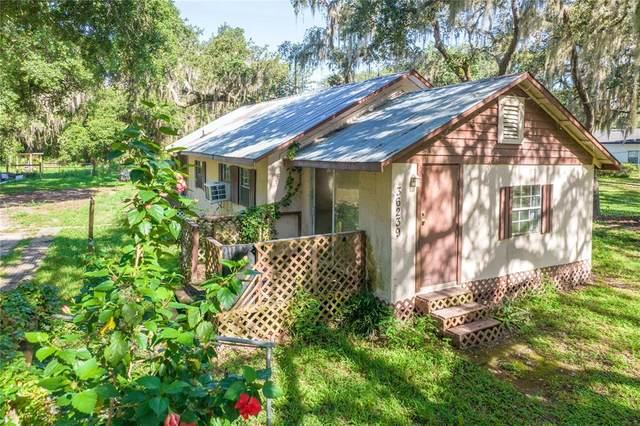 36239 Emeralda Avenue, Leesburg, FL 34788 (MLS #G5044656) :: Vacasa Real Estate