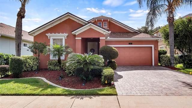 13736 Amelia Pond Drive, Windermere, FL 34786 (MLS #G5044694) :: Bustamante Real Estate