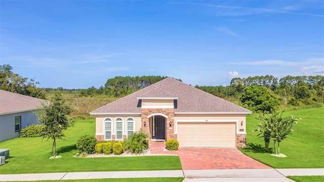 531 Bellissimo Pl, Howey in the Hills, FL 34737 (MLS #G5044716) :: Dalton Wade Real Estate Group