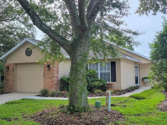3014 Andover Court, Mount Dora, FL 32757 (MLS #G5044718) :: Bridge Realty Group
