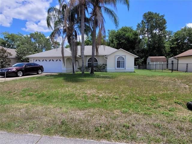 3027 Umbrella Tree Drive, Edgewater, FL 32141 (MLS #G5044735) :: RE/MAX Elite Realty