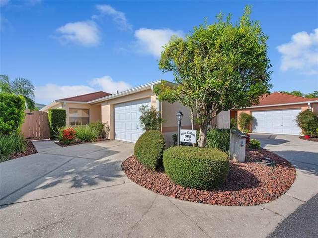 905 Mendoza Boulevard, Lady Lake, FL 32159 (MLS #G5044737) :: Griffin Group