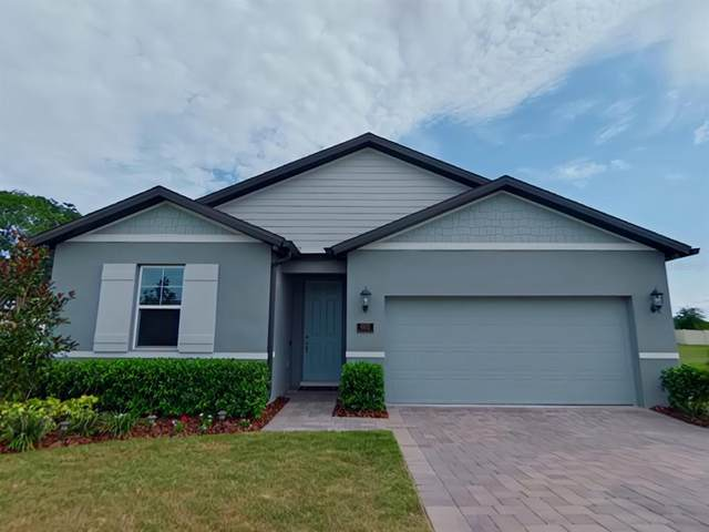 602 Napoli Way, Howey in the Hills, FL 34737 (MLS #G5044763) :: Dalton Wade Real Estate Group