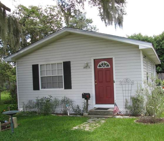 20245 SE 141ST Place, Umatilla, FL 32784 (MLS #G5044813) :: Bob Paulson with Vylla Home