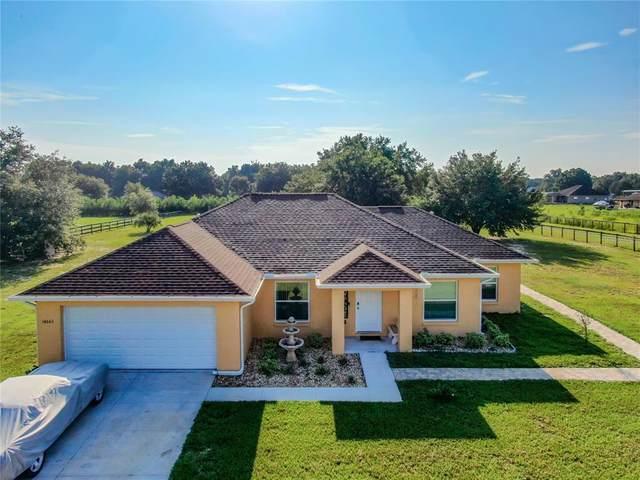 14665 SE 100TH Avenue, Summerfield, FL 34491 (MLS #G5044860) :: Dalton Wade Real Estate Group