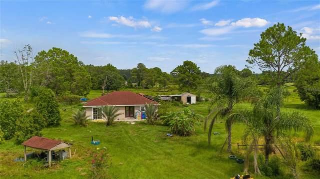 4717 Brantley Road, Groveland, FL 34736 (MLS #G5044878) :: Better Homes & Gardens Real Estate Thomas Group