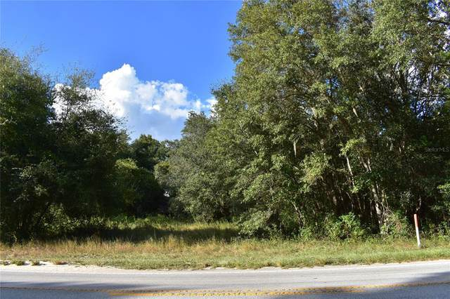 Lake Griffin Road, Lady Lake, FL 32159 (MLS #G5044881) :: Your Florida House Team