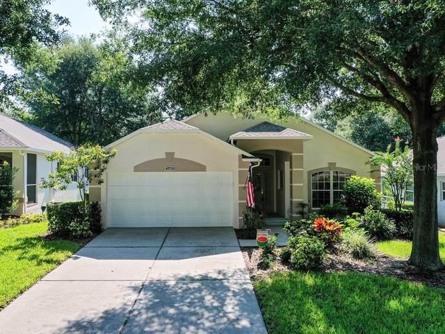 3683 Eversholt St, Clermont, FL 34711 (MLS #G5044903) :: The Posada Group at Keller Williams Elite Partners III
