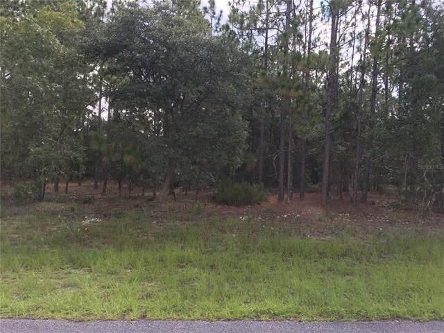 11280 N Kenney Loop, Citrus Springs, FL 34433 (MLS #G5044937) :: RE/MAX Elite Realty