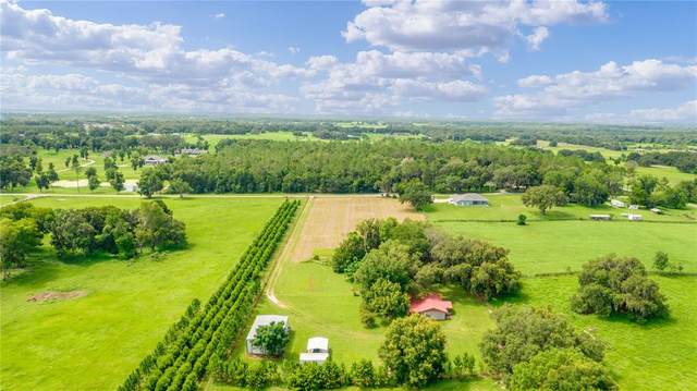 3138 County Road 216, Oxford, FL 34484 (MLS #G5044949) :: Dalton Wade Real Estate Group