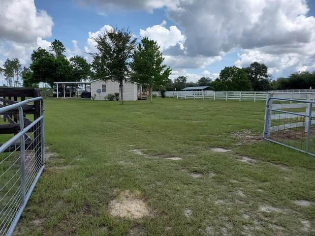 13091 SE 60 Street, Morriston, FL 32668 (MLS #G5044976) :: Century 21 Professional Group