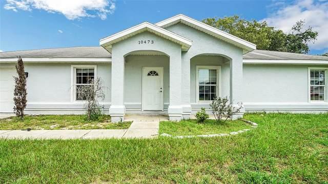 10473 SE 125TH Street, Belleview, FL 34420 (MLS #G5045034) :: Premium Properties Real Estate Services