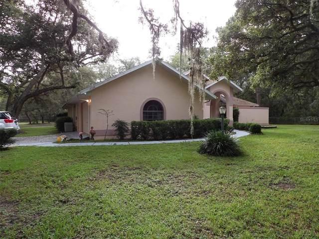 2354 S Bascombe Avenue, Homosassa, FL 34448 (MLS #G5045170) :: Young Real Estate