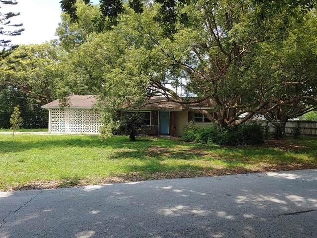 1231 Holiday Dr, Eustis, FL 32726 (MLS #G5045179) :: Everlane Realty