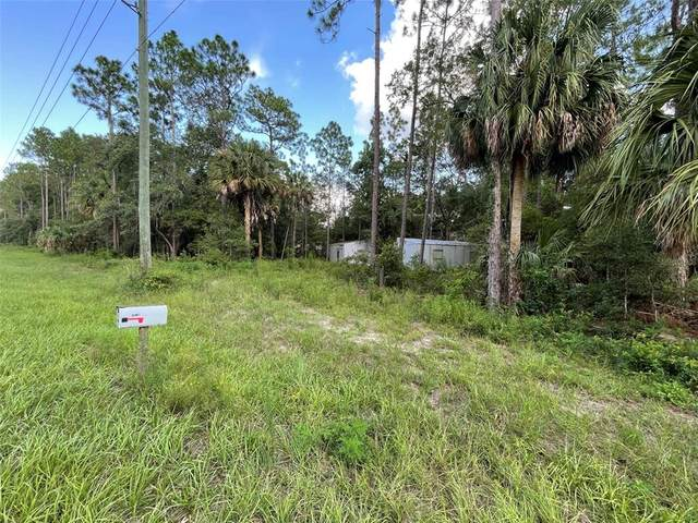 10136 W Dunnellon Road, Crystal River, FL 34428 (MLS #G5045431) :: Premium Properties Real Estate Services