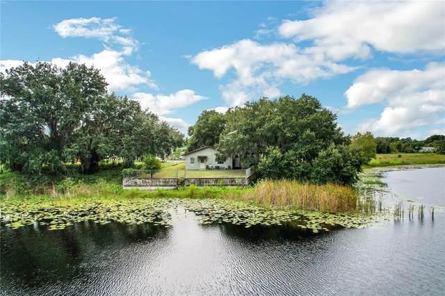33507 Linda Drive, Leesburg, FL 34788 (MLS #G5045826) :: Premium Properties Real Estate Services