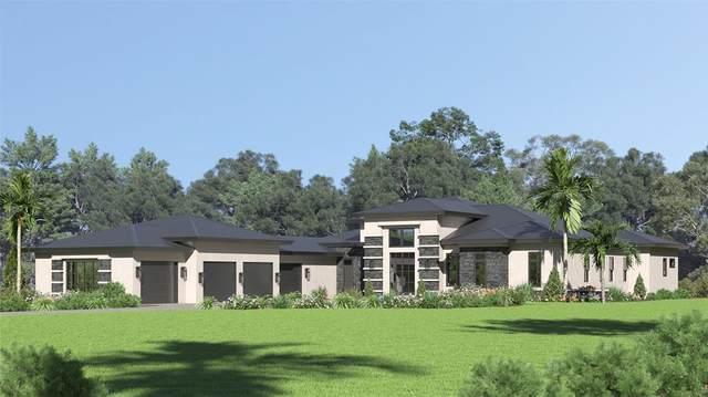 16204 Pendio Drive, Montverde, FL 34756 (MLS #G5046012) :: Bustamante Real Estate