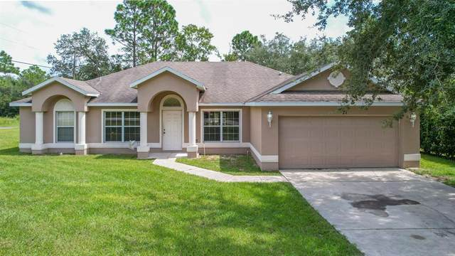 8171 N Primrose Drive, Citrus Springs, FL 34434 (MLS #G5046022) :: The Paxton Group