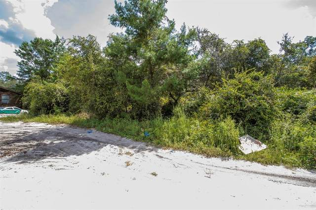 0 Se 213Th Terrace, Umatilla, FL 32784 (MLS #G5046062) :: Everlane Realty